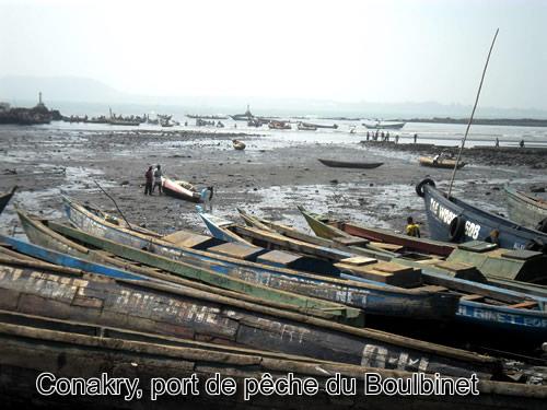 Port de pêche du Boulbinet à Conakry