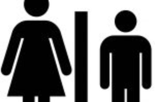 Article : Le sexe fort n'est plus celui que l'on croit